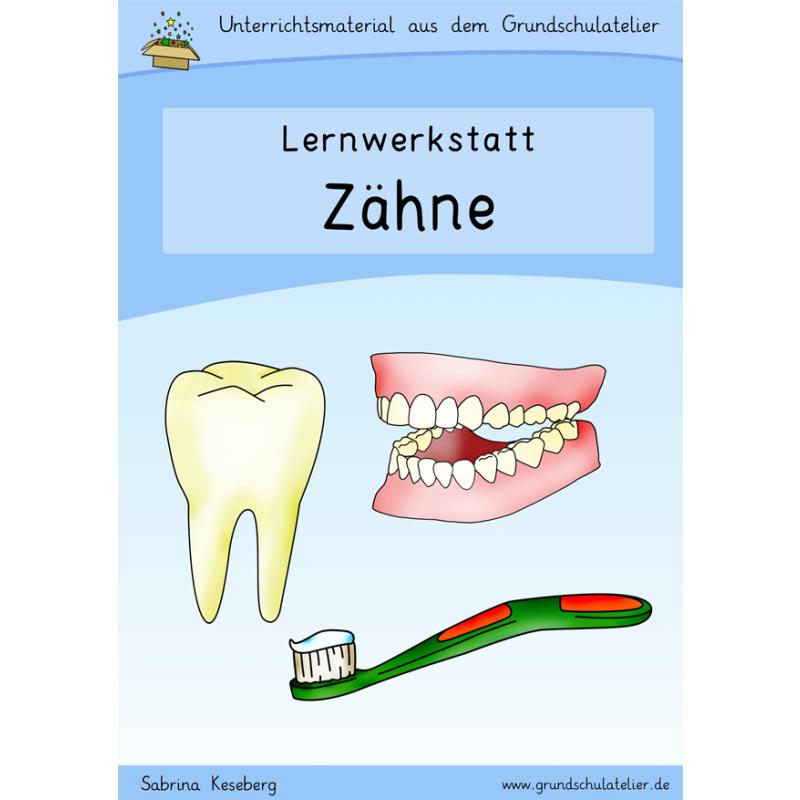 Zähne-Werkstatt für die Grundschule