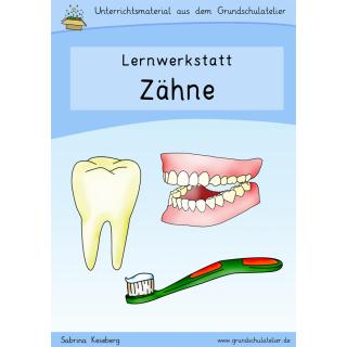 Sachunterricht Sachkunde Grundschule Arbeitsblatt Unterrichtsmaterial