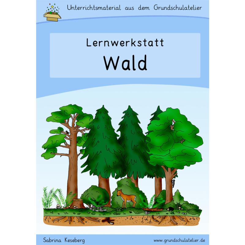 Wald-Werkstatt fu00fcr die Grundschule