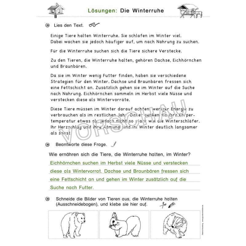 Kostenlose Arbeitsblätter Vögel Im Winter : Tiere im winter werkstatt für die grundschule